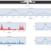 python 股票量化盘后分析系统(Beta v0.21)