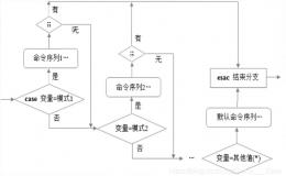 Shell条件语句、if语句、case语句(小白都懂的详解+逻辑图释)