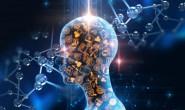机器学习入门要学习什么内容呢?