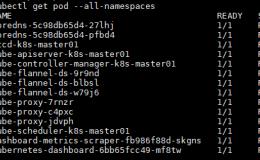 K8S–可视化界面Kubernetes Dashboard(API Server方式)