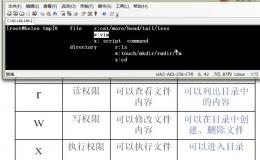 linux权限管理命令