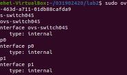 实验2:Open vSwitch虚拟交换机实践