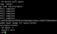 Docker学习笔记之-部署.Net Core 3.1项目到Docker容器,并使用Nginx反向代理(CentOS7)(二)