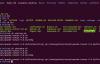 Linux下配置tomcat