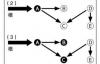 jvm入门及理解(六)——垃圾回收与算法