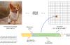 YOLO v3算法介绍