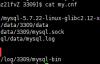 《MySQL数据库》MySQL主从复制搭建与原理