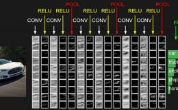 《神经网络的梯度推导与代码验证》之CNN的前向传播和反向梯度推导
