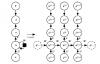 《神经网络的梯度推导与代码验证》之LSTM的前向传播和反向梯度推导